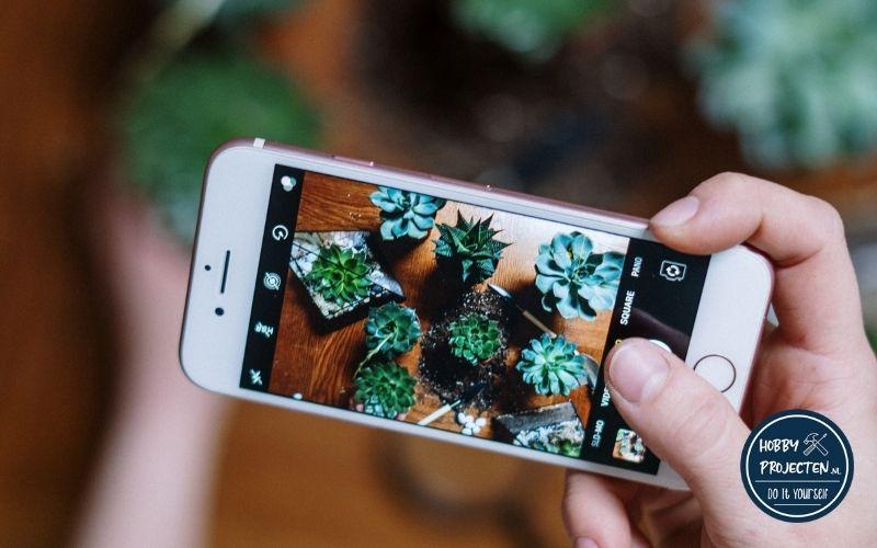 Foto met mobiel van planten